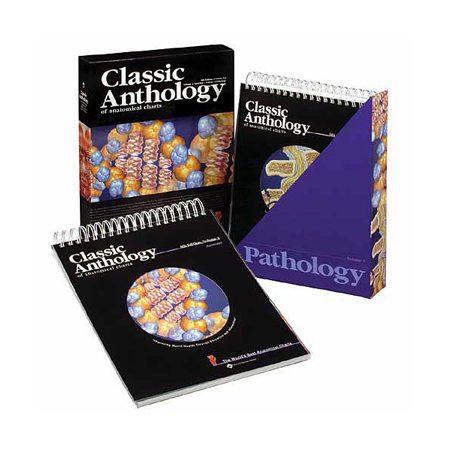 Classic Anatomical Chart Anthology, 10in x 12in