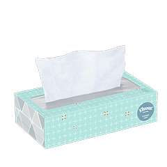 Facial Tissue, 100 Sheets/Box, Case of 30 Boxes