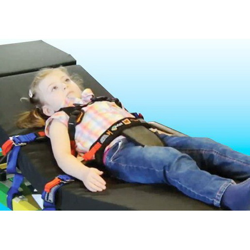 Ambulance Child Restraint System