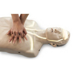 Brayden CPR Training Manikins with White Indicator Lights, Adult