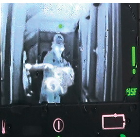 Thermal Image Rescue Randy, 165LB