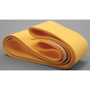 Disposable Body Strap with Adhesive Fastener, 58in L x 2in W, Yellow