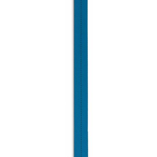 Tubular Web, 1in W, Blue