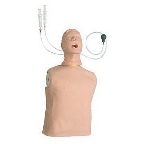 "Life/Form® ""Airway Larry"" Deluxe Airway Management Trainer, Adult"
