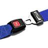 Nylon Strap, Metal Push Button Buckle, Metal Swivel Speed Clip Ends, 2-Piece, 5ft, Blue
