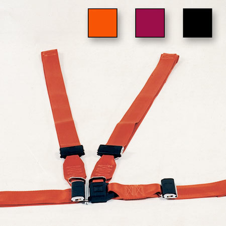 Shoulder Harness Restraint System