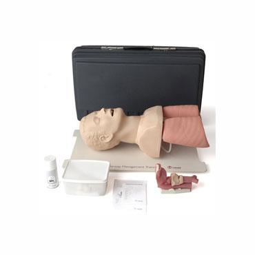 Intubation Manikins