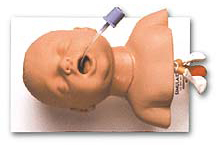 Simulaids Intubation Trainer, Infant