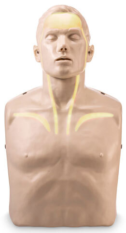 Nasco<sup>&reg;</sup> Brayden CPR Training Manikin, Red Indicator Lights