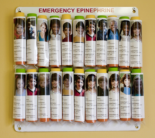 Allergy Emergency Kit<sup>™</sup> Storage Panel Wall Unit Kit for Epinephrine Auto Injectors, Signage and Bag Included
