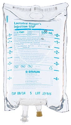 B. Braun Medical Excel IV Bags, Lactated Ringers, 500mL