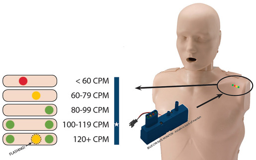 Prestan<sup>®</sup> Professional Child Manikin with CPR Rate Monitor